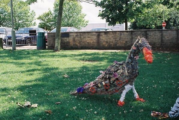Goose 5